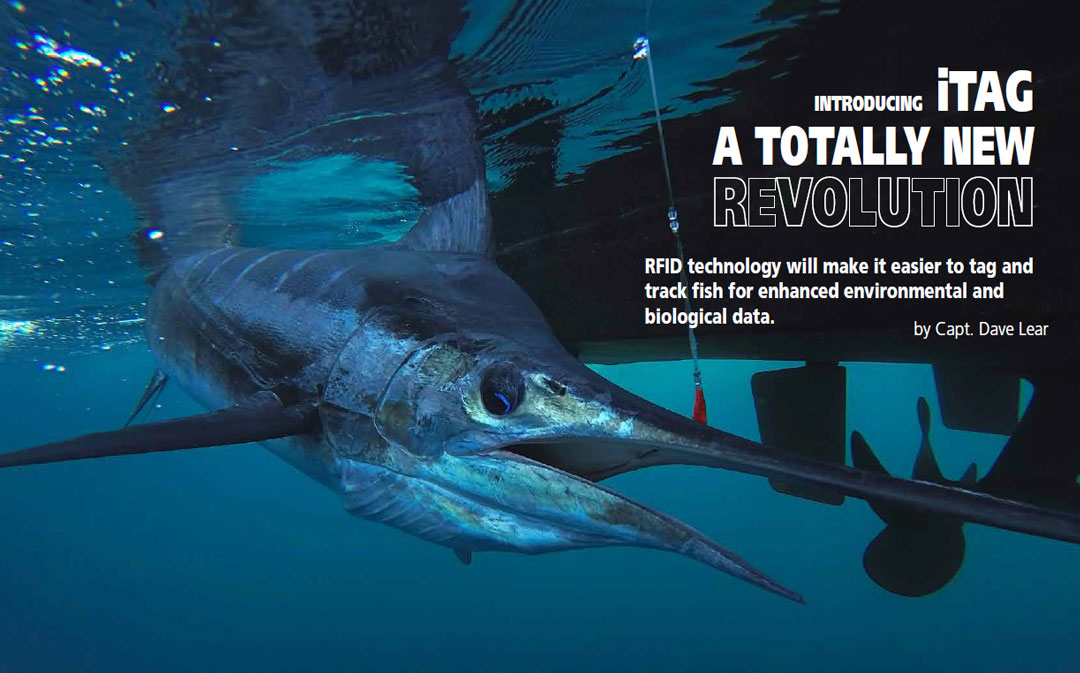 iTAG - A Revolutionary Fish Tagging Technology