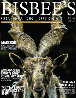 Bisbee's Conservation Journal Cover Image | Issue 04